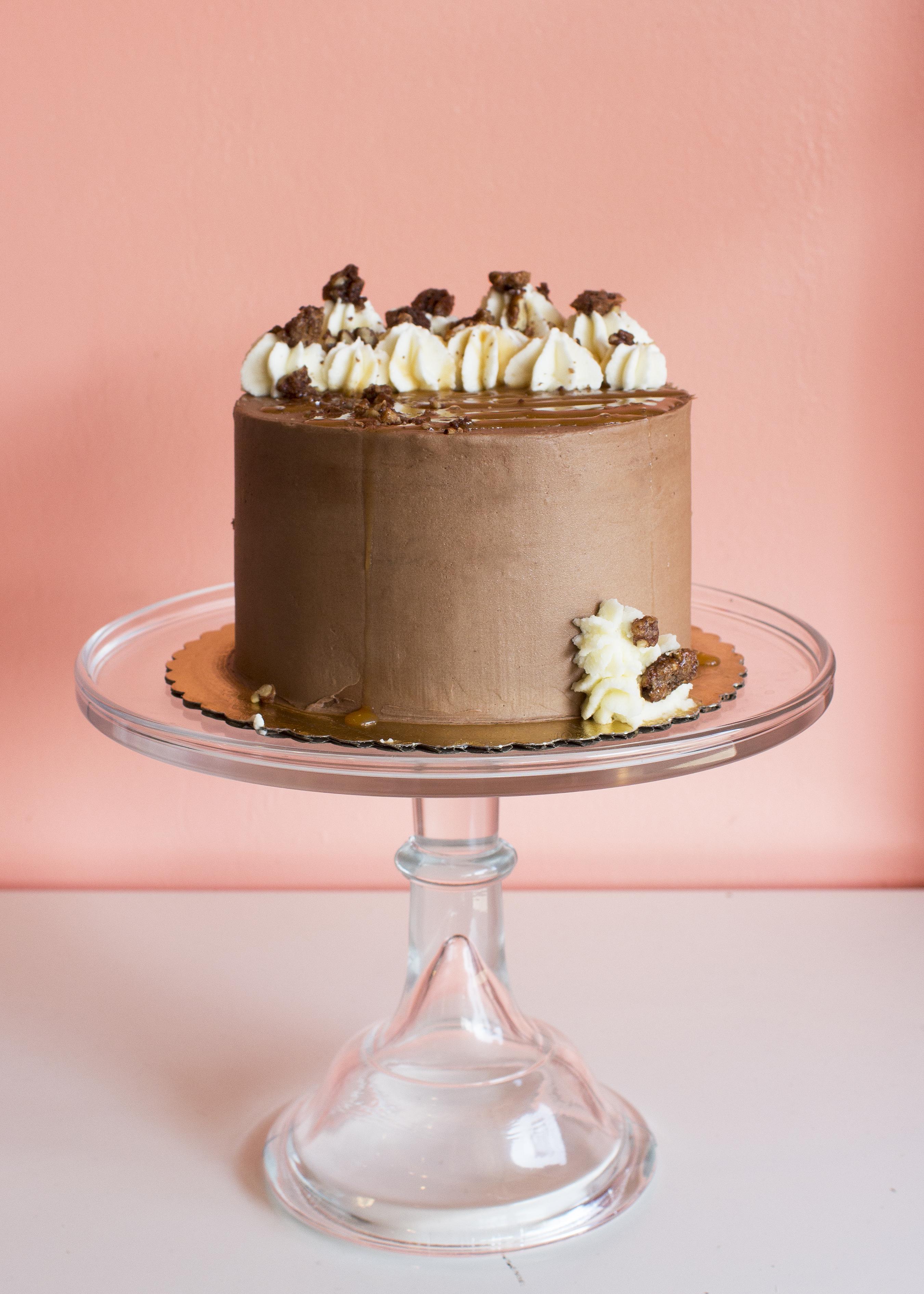 Turtle-Case-Cake